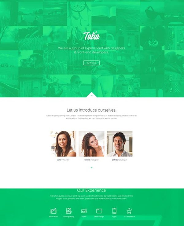 Responsive-Flat-Design-One-Page-Template