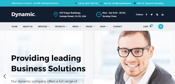 25+ Best Insurance Company WordPress Themes 2017
