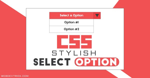 Custom HTML CSS Select Option | Stylish Dropdown Options