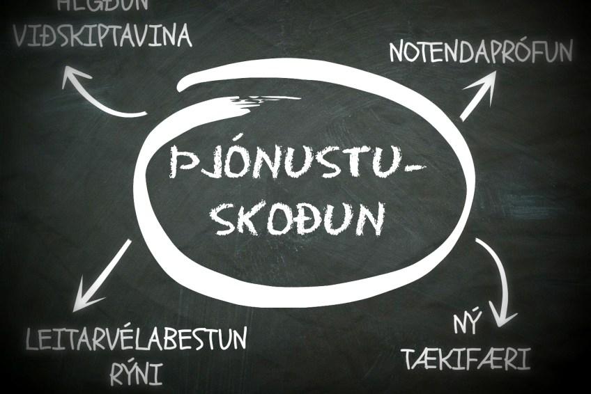 Þjónustuskoðun ©webdew