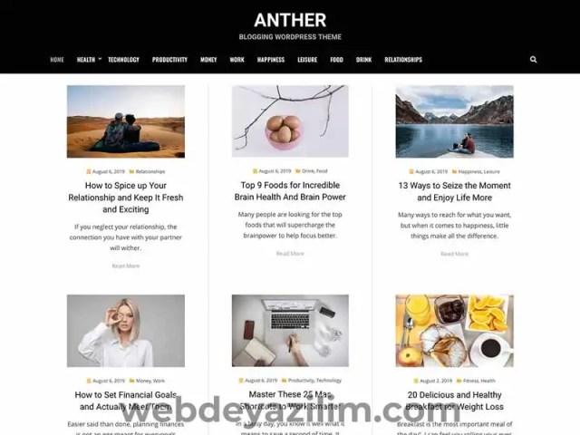 Anther WordPress Teması