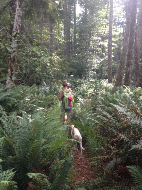 Hiking in the Sooke Hills