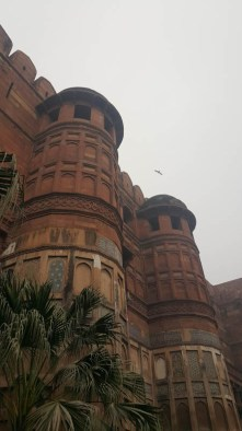 Red Fort in Agra. When my patience for forts was at its highest.