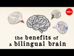 The benefits of a bilingual brain - Mia Nacamulli | TED-Ed