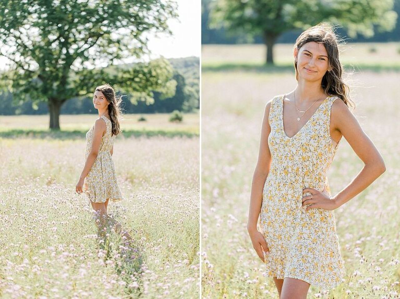 A girl's senior portrait session on a sunny evening in a field in Northern Michigan