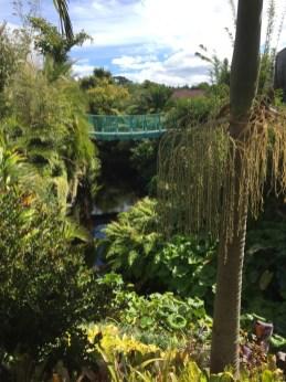 ▲Tropical Garden