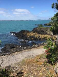 ▲Rangitoto Island 沿海風景