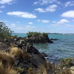 Rangitoto Island 沿海風景