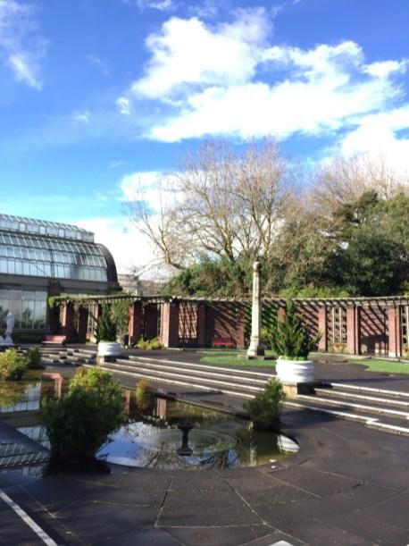 Auckland Domain Wintergardens