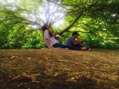 Russell 銀杏樹
