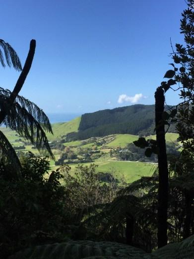 Mount Manaia Track