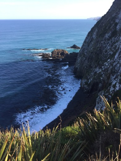 Nugget Point Cliff View