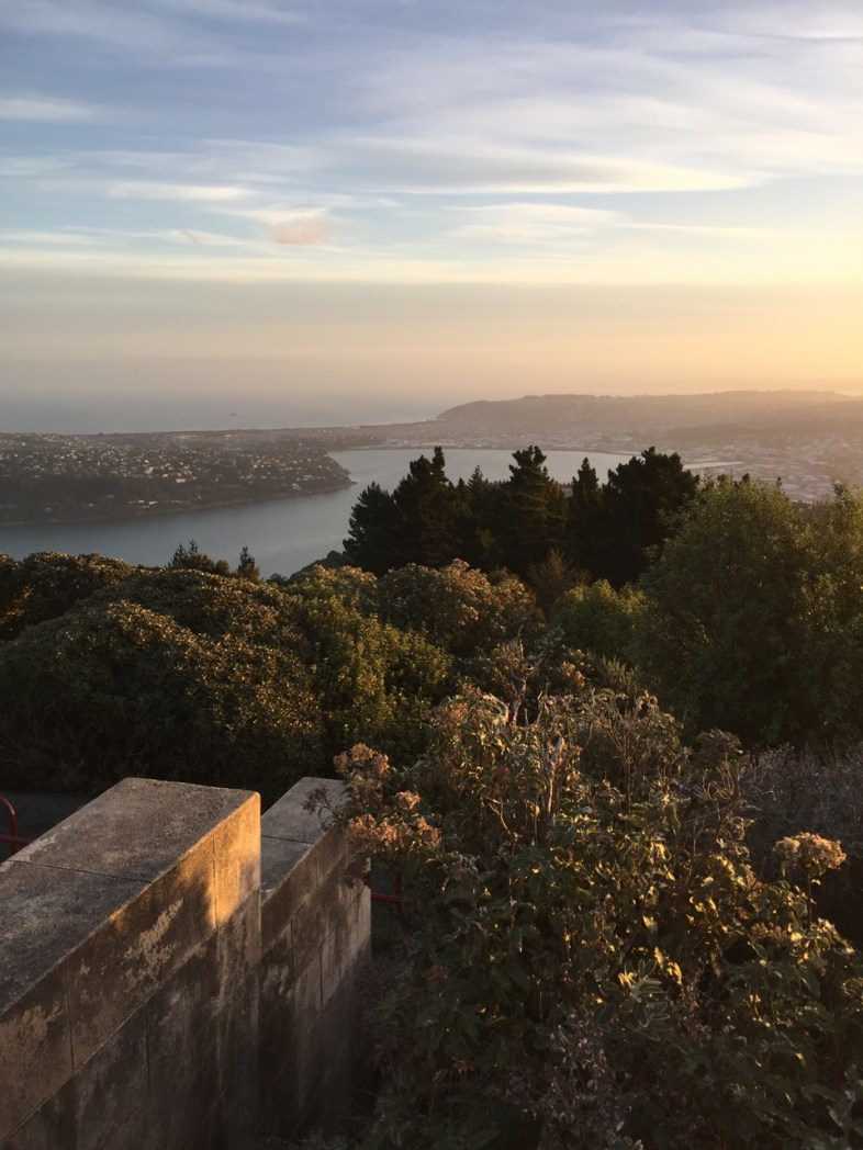 Signal Hill Lookout
