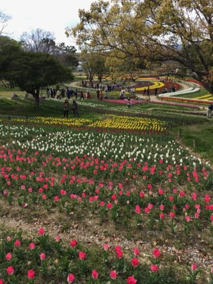 萬博紀念公園