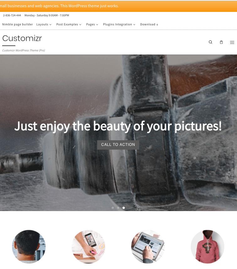 customizr wordpress theme free