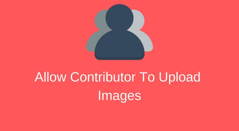 Allow Contributor To Upload Media File