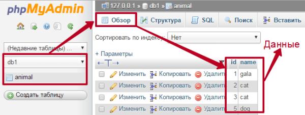 Вывести данные из MySQL текст заклинаний с нотами для бубна