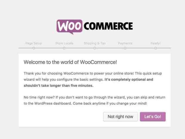 Добавление пользовательских полей в описании товара с помощью WooCommerce