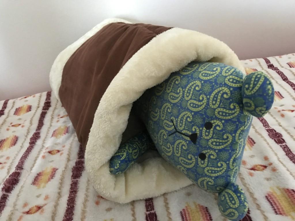 中に入るとこんな感じの寝袋に