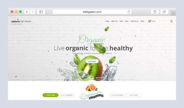 organic store wordpress theme