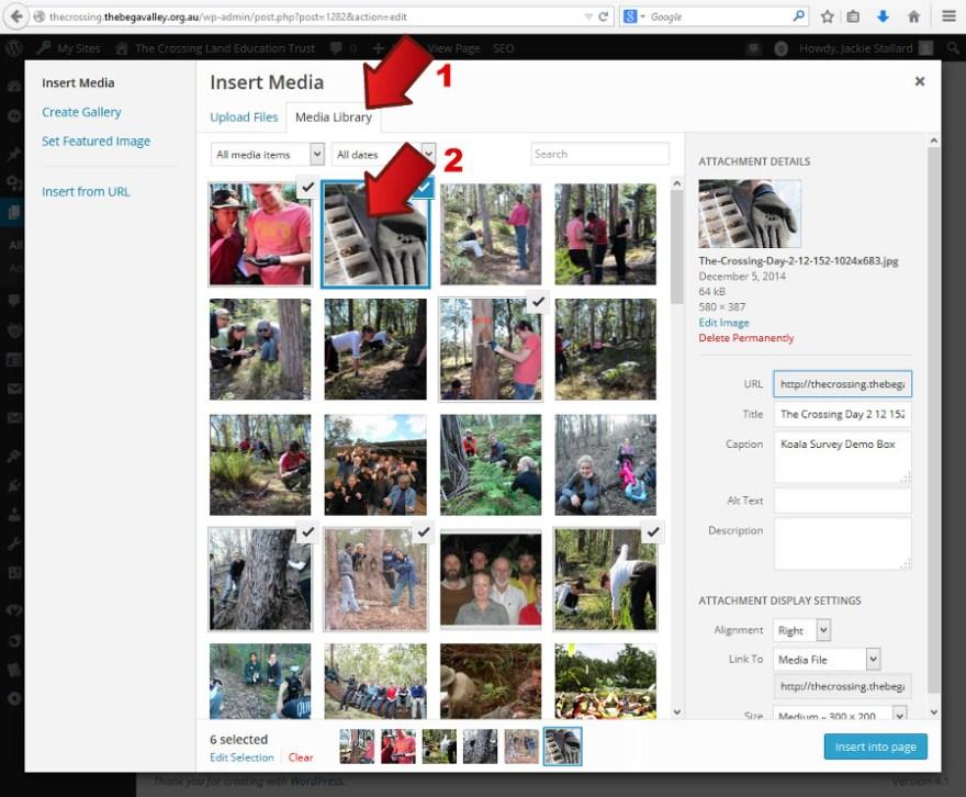 Click Media Library and select images - Inserting a thumbnail gallery -  Webhive - Web Design Batemans Bay, Moruya, Narooma, Tilba, Cobargo, Bega