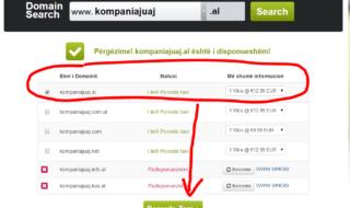 3. Procedoni me porositjen e domain-it