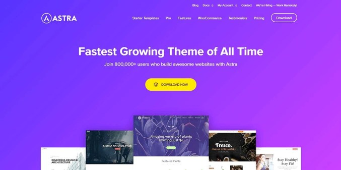 Astra - Best Theme for Blog