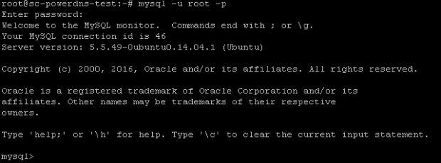 026-go-into-mysql-client-prompt