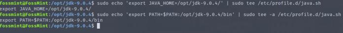 Set Java Environment Variables