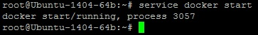 002-StartDockerService
