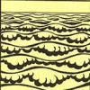 plankton-eencellige-dier-woongebied-zeeen