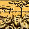 buideldas-zoogdier-savanne-woongebied