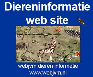 webjvm-dieren-informatie