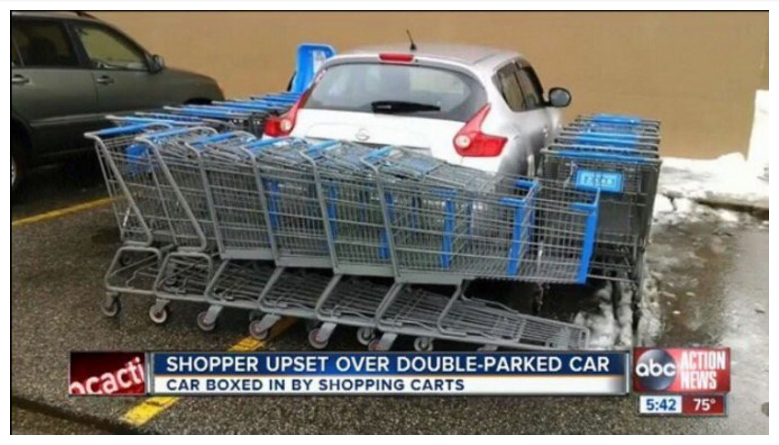 Car taking up two spaces in parking lot surrounded by shopping carts in apparent protest to bad parking