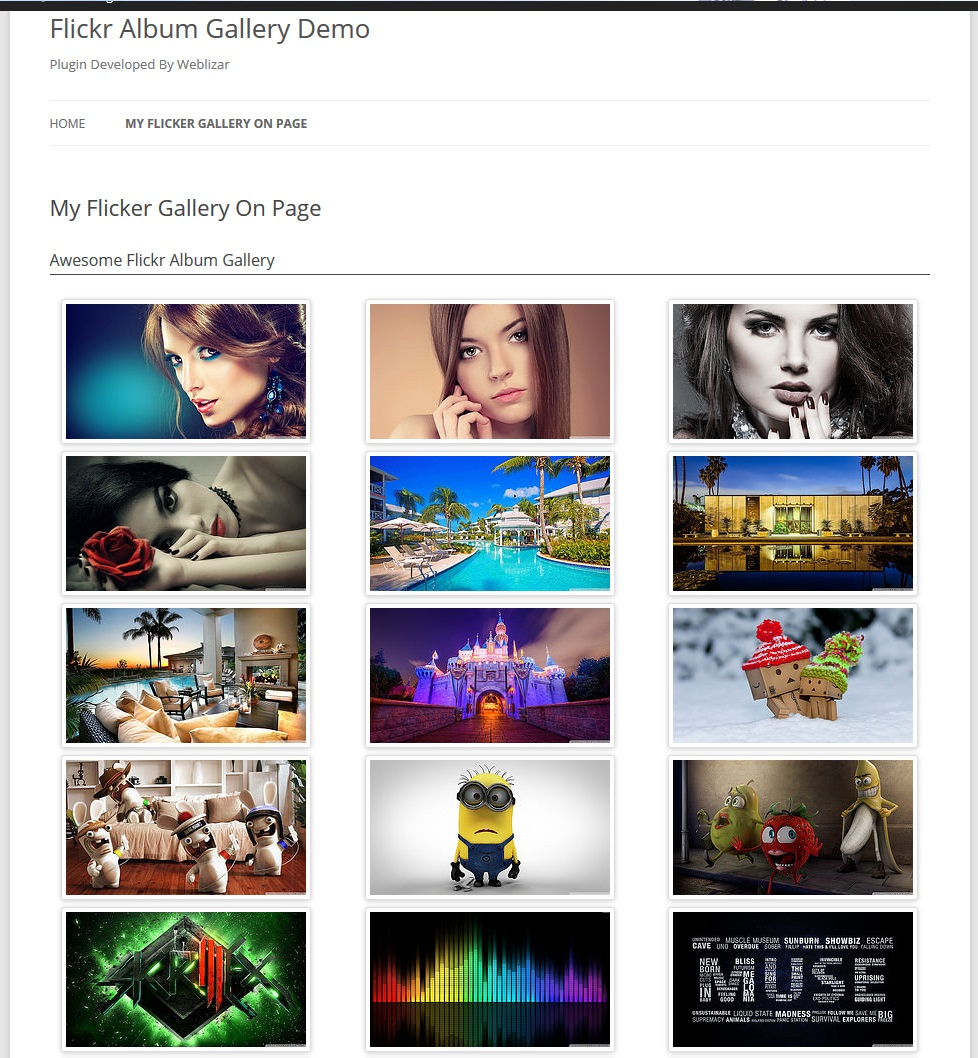 flickr-album-gallery-plugin-on-page