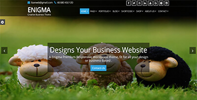 weblizar advanced wordpress premium theme