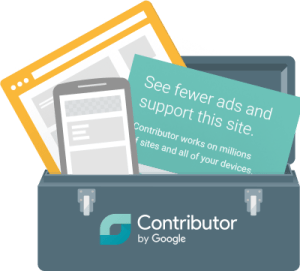 google-contributor-weblizar-blog