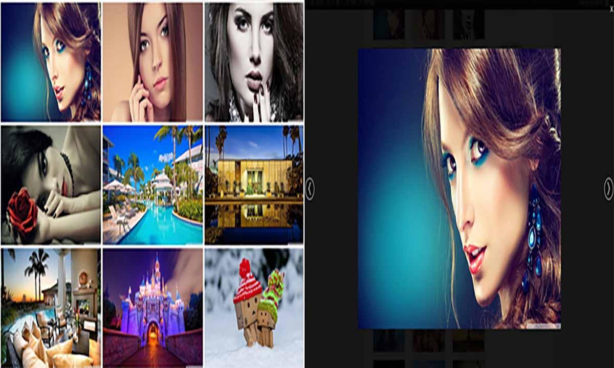 Image of Flickr Album Gallery With Shortcode Widget wordpress plugin