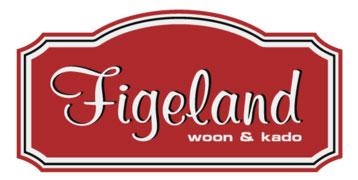 Workshop agenda Figeland