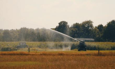 Update droogte: waterschap zet zeilen bij en is alert