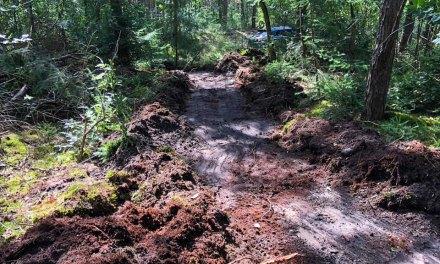 MTB-ers weer druk met route in het bos, verbetering op het Kikkerpad