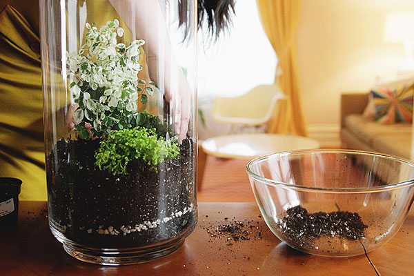 nicole-balch-west-elm-terrarium-mothers-day-diy-project-plant-gift-cute-making-lovely-soil-charcoal