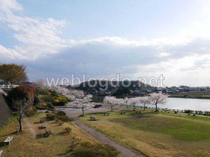 大洗桜道公園