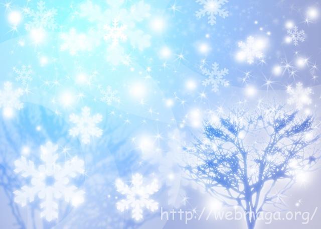 冬休みの過ごし方