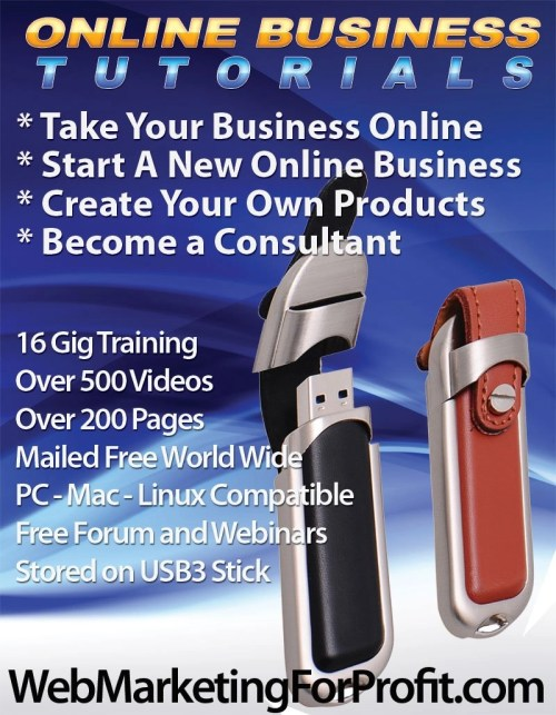 Online business training USB3 stick