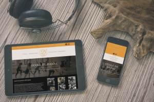 Creation site internet- wordpress - responsive - bordeaux