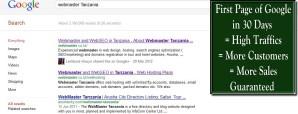Search Engine Optimization - SEO