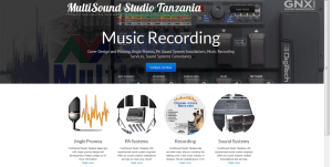 multisoundstudio.co.tz
