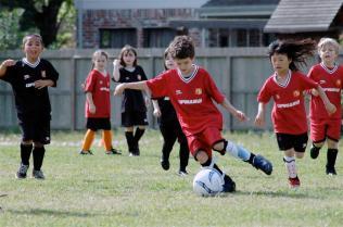 Soccer-2013-8