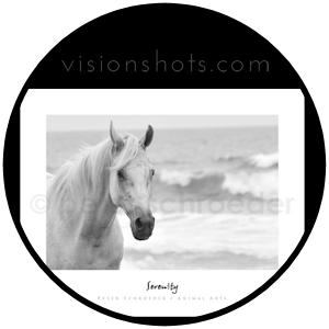 circle_visionshots.com